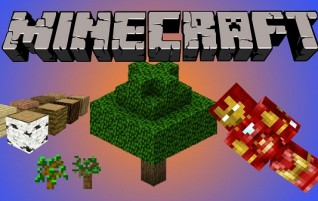 Minecraft Basics For Newbies